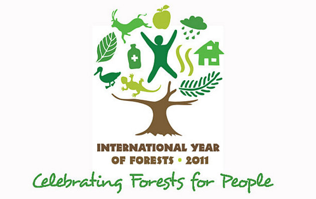 annee-international-forets