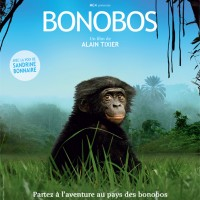 Bonobos, vitons leur disparition !