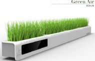 The Green Air, une bande de verdure pour le bureau