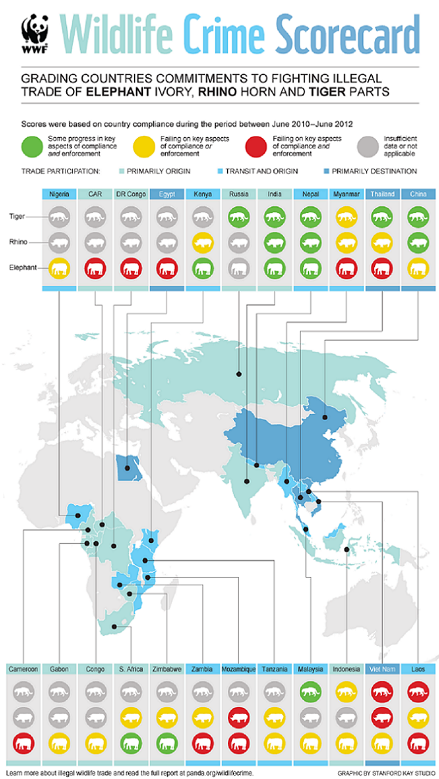 infographie-wildlife-crime-scorecard-WWF