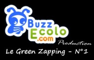 Le Green Zapping N°1