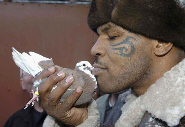 mike tyson pigeons