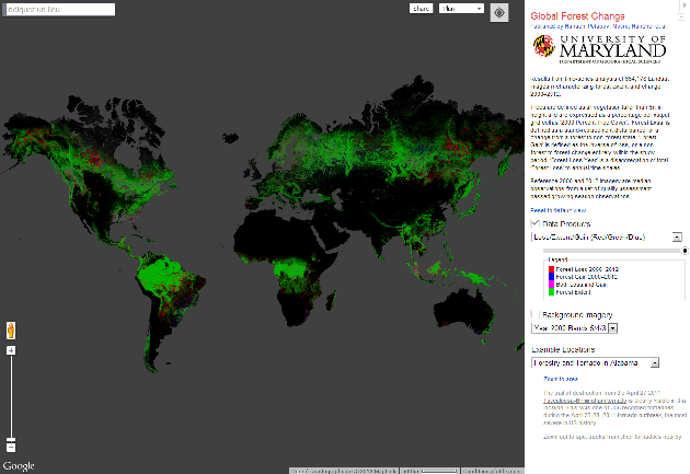 google earth deforestation