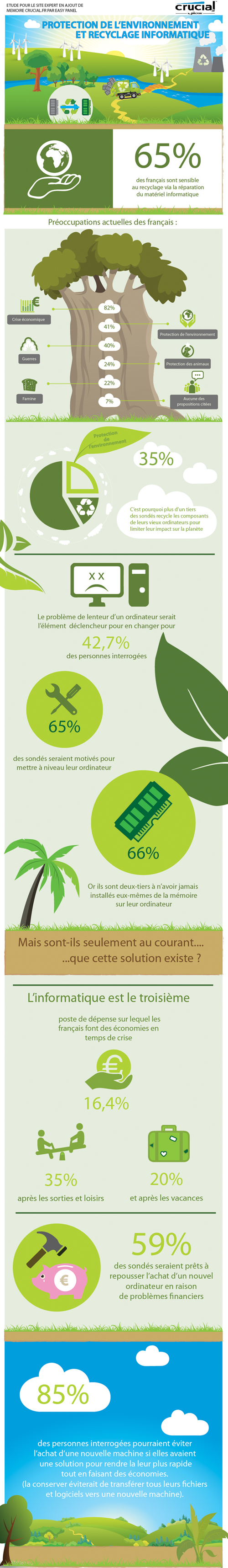 Infographie-Crucial.fr