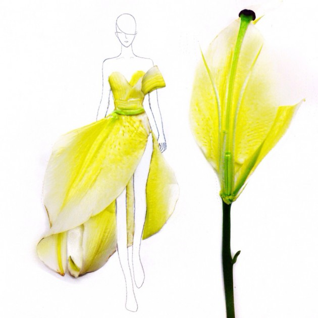 Flowers fashion illustrations
