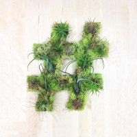 Art We Heart : Entre tableau vegetal et green graffiti