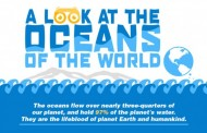 Infographie : A look at the oceans of the world